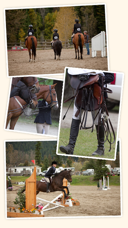 Lessons at Topline Stables